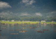 加茂湖06