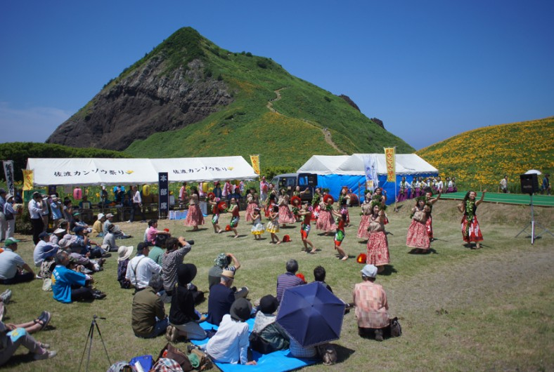 佐渡カンゾウ祭り